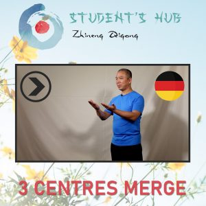 3 Centres Merge – Full Package (German)